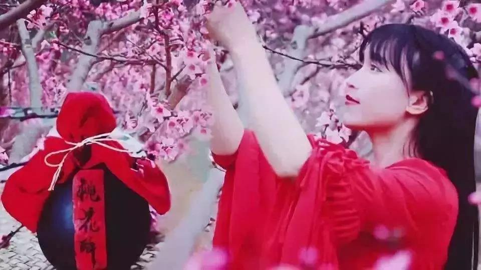 Li Ziqi, peach blossom Wine, Hanfu, red