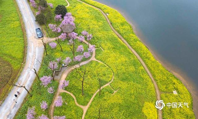 Mountain decorated with trees and flowers, Chongqing