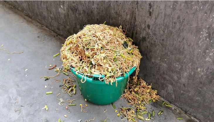 Pupils from a rural elementary school dumped nutritious meals in the trash because of poor taste